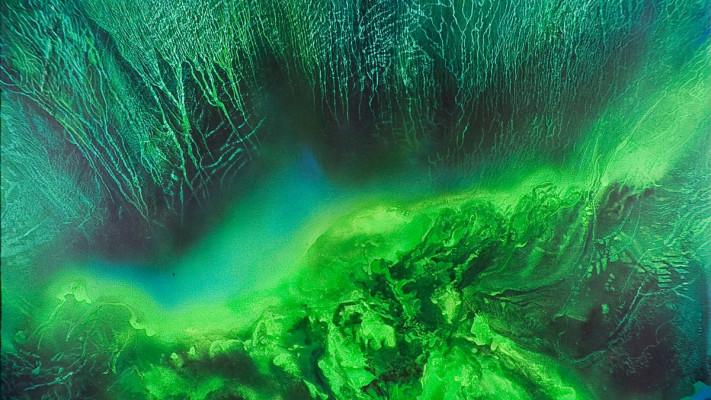 Gran-Igapo-1994